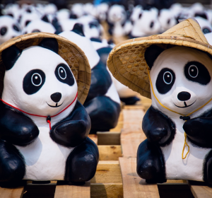 panda header